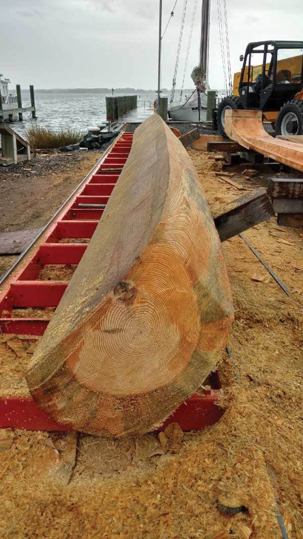 The port garboard log for Caroline takes shape at the Chesapeake Bay Maritime Museum in St Michaels MD.