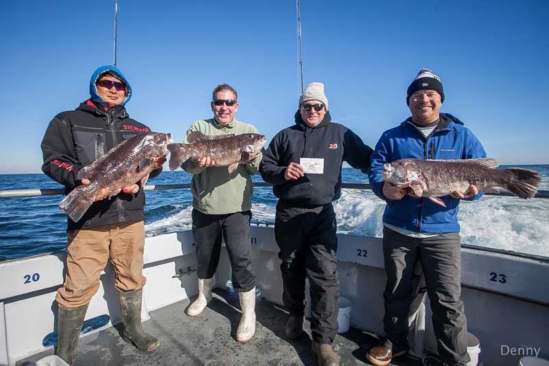 Looking for a winter fishing escape? Winter tog fishing out of Lewes, Indian River, and Ocean City is a worthy endeavor. Photo courtest of Capt. Monty Hawkins on Morning Star out of Ocean City, MD