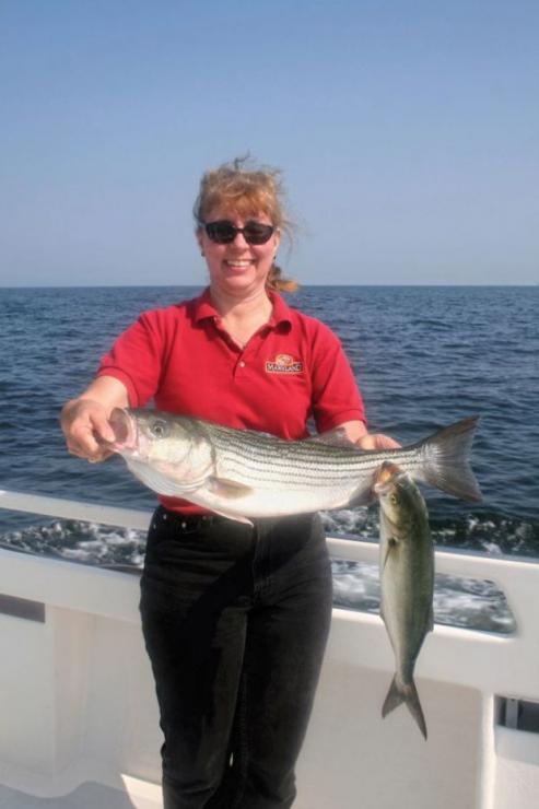 Fish Spot Chesapeake Beach Proptalk