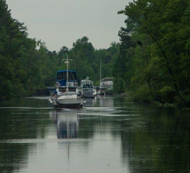 Spring traffic of snowbirds and Loopers in Dismal Swamp Canal